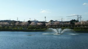 Photo_17-04-13-18-14-22.242