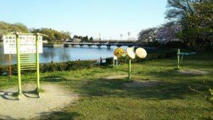 Photo_17-04-13-18-14-41.365