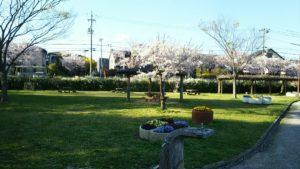 Photo_17-04-13-18-14-44.220