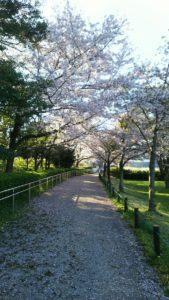 Photo_17-04-13-18-14-46.875