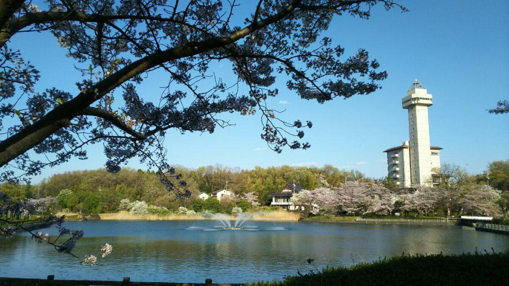 Photo_17-04-13-18-14-50.035