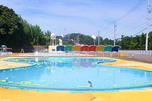 pool_image
