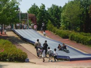 小幡緑地5